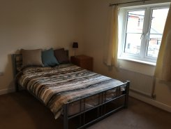 /doubleroom-for-rent/detail/1361/double-room-tiverton-price-425-p-m