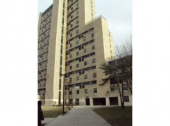 Apartment offered in Bronx New York United States for $1261 p/m