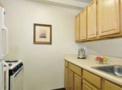 Apartment offered in Brooklyn New York United States for $1234 p/m